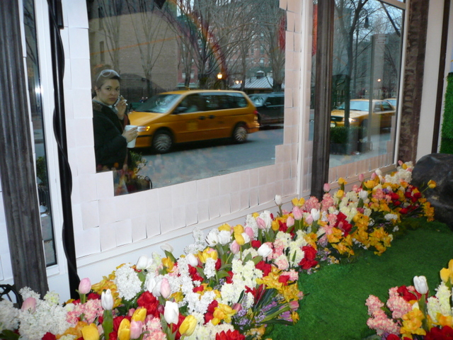 Window on New York